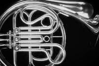 Frenchhorn3